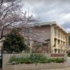 柏の葉高校
